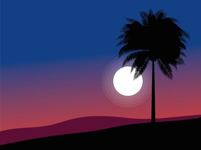 palmboom in maanlicht