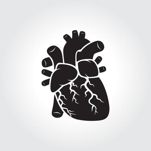Simbolo di anatomia del cuore vettore