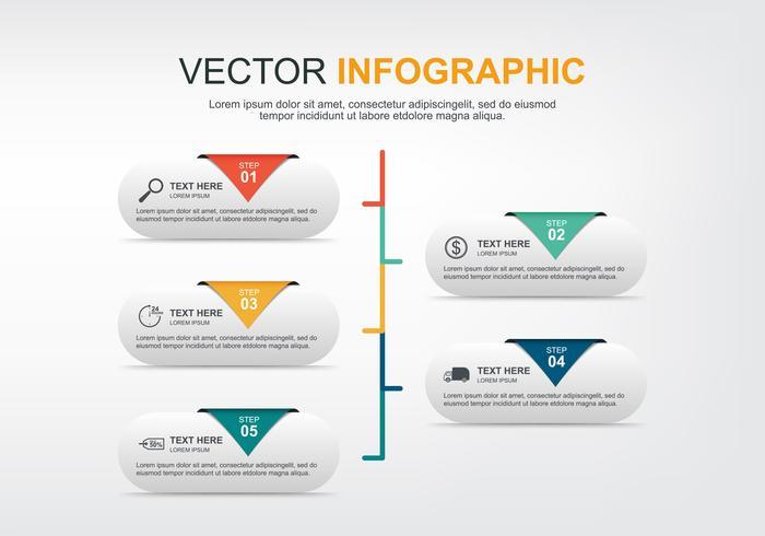 design de elementos infográfico com 5 opções vetor