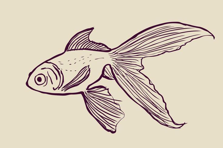 Vector de la silueta del pez volador aislado en el backgroud blanco.