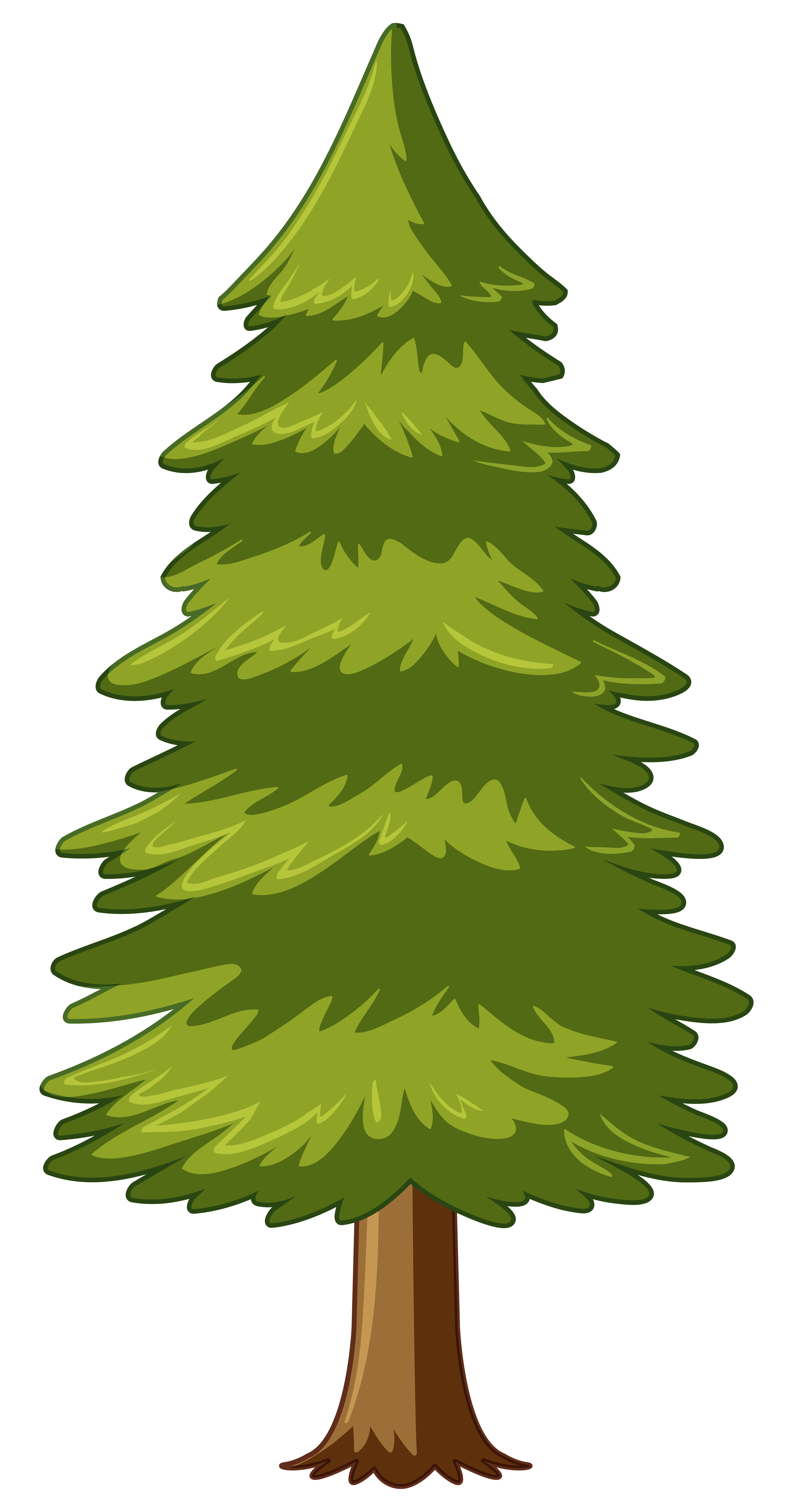 Pine tree on white background - Download Free Vectors ...