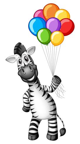 Cute zebra holding colorful balloons
