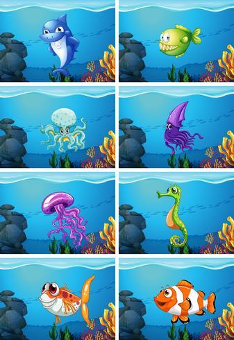 Escenas submarinas con animales marinos.