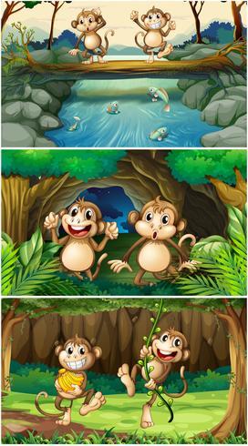 Tres escenas con monos en el bosque.