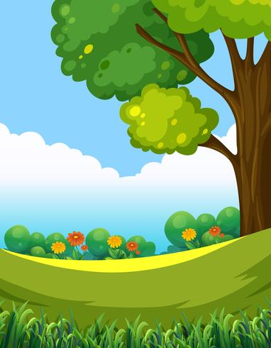 Un bellissimo paesaggio verde