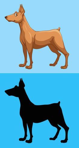 Cachorro marrom no fundo azul