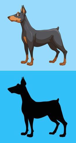 Perro lindo y su silueta sobre fondo azul