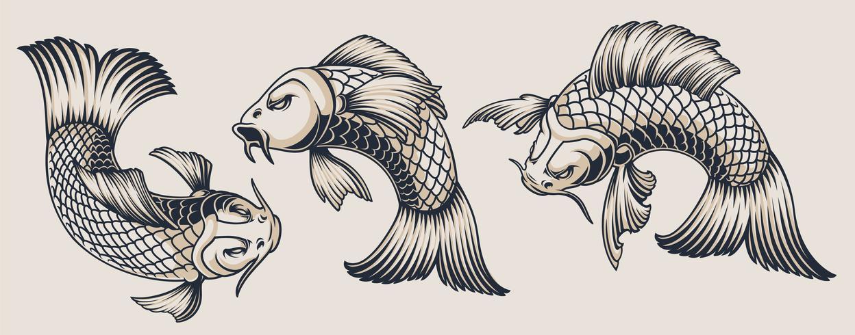 Conjunto de ilustraciones de carpa koi. vector