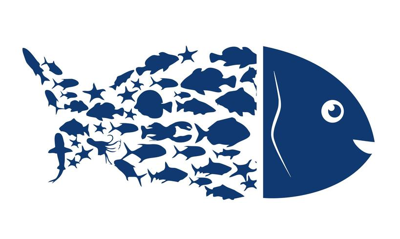 Fish logo. Blue symbol of fish on a white background. Vector illustration.