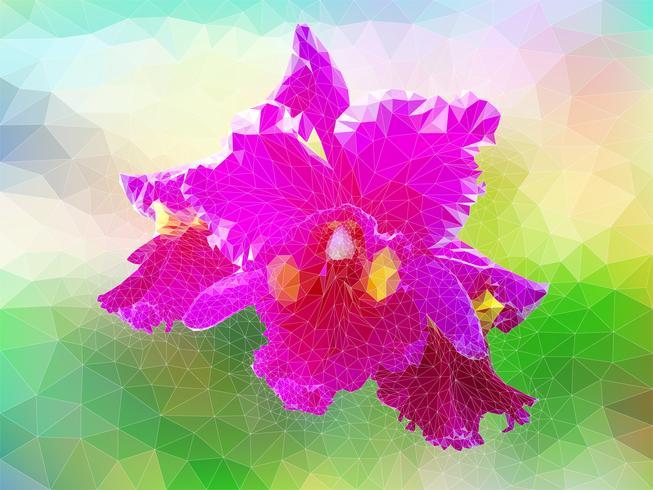 Polygon Vektor Orchidee