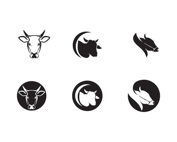 Koe hoofd logo sjabloon vector