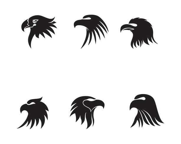 Eagle head bird logo and symbol vector