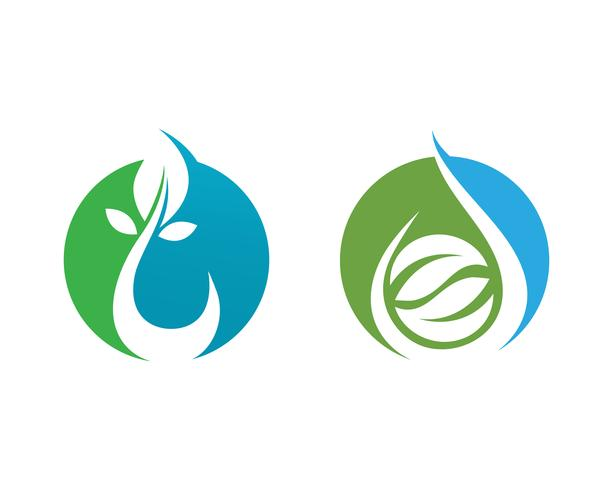 Water drop and leaf Logo Template vector illustration