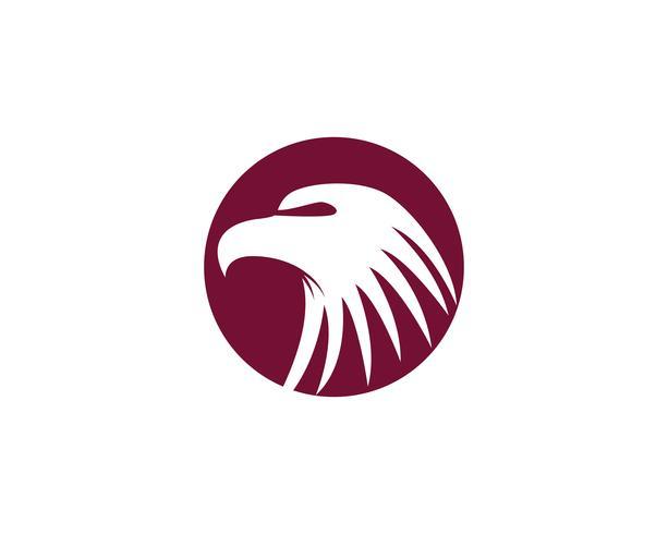 Logo dell'uccello della testa dell'aquila e vettore di simbolo
