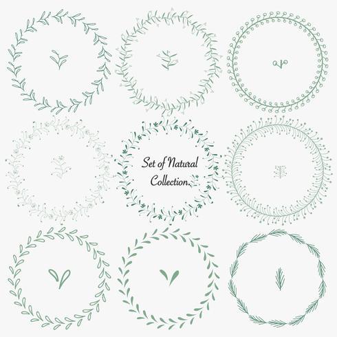 Set di cornici rotonde disegnati a mano per la decorazione. Vector collezione naturale.