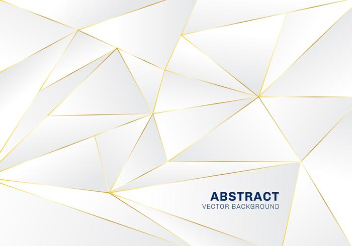 Abstract polygonal pattern luxury on white and gray header background with golden lines. vector
