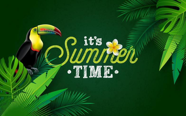 Es ist Sommerzeit-Illustration mit Blumen-und Tukan-Vogel auf grünem Hintergrund. Vektor-tropisches Feiertags-Design mit exotischen Palmblättern und Phylodendron