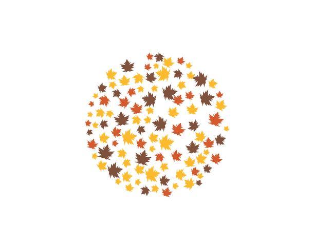 Herbst Blatt Logo Vektor-Icons