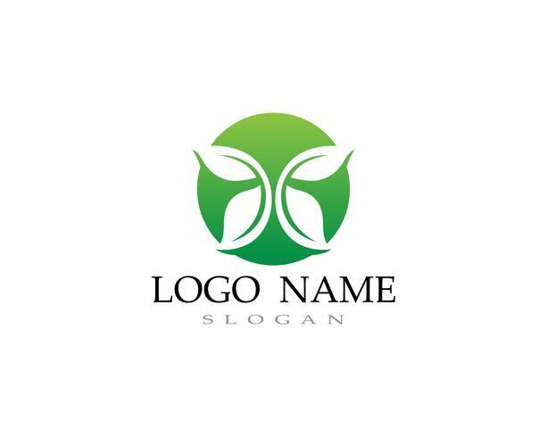 Logos des grünen Blattökologie-Naturelementvektors