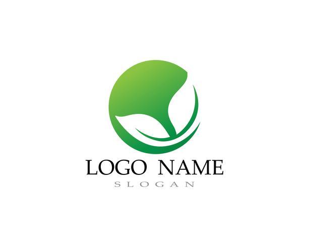 Logoer av grönt blad ekologi naturelement vektor