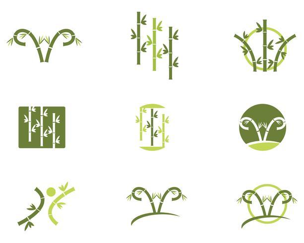 Bambus Logo Vorlage Vektor Icon