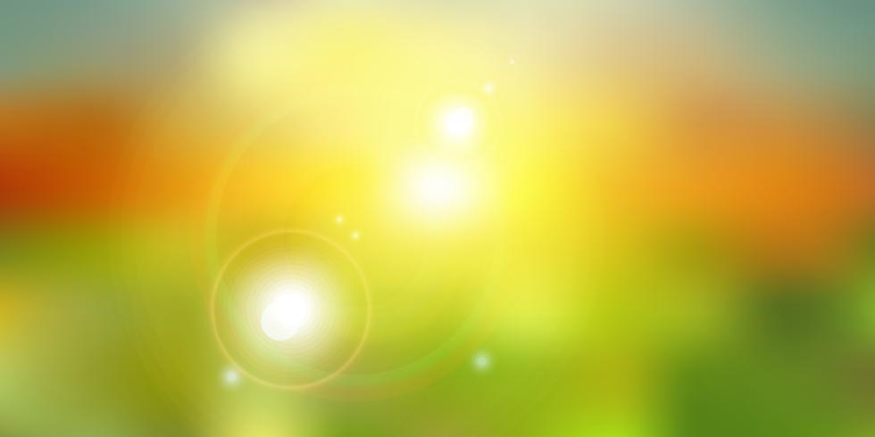 La lumière du soleil de l'été sur la nature verte arrière-plan flou.