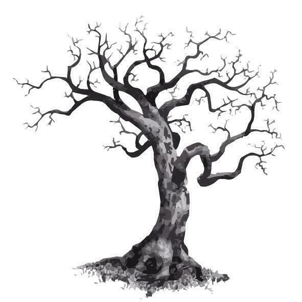 Träd med rot