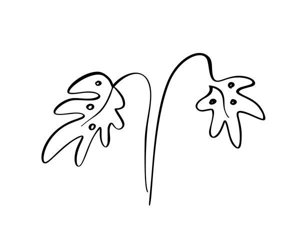 Monstera löv tropisk vektor illustration linjekonst. Konturhandritning. Minimalismskonst. Modern inredning