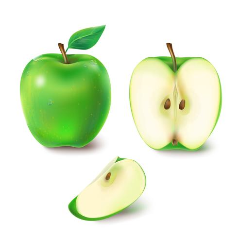 Ilustración vectorial de una jugosa manzana verde.