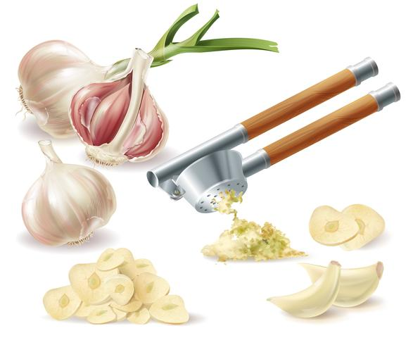 Vector clipart with garlic, cloves and metal press
