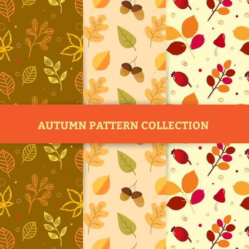Hand draw autumn patterns vector