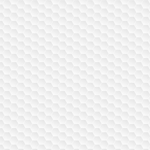 Hexagonal white pattern vector