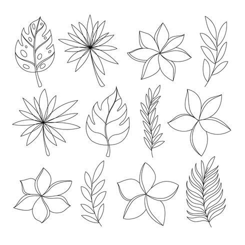 Exótico conjunto de flores tropicales y hojas a mano. vector