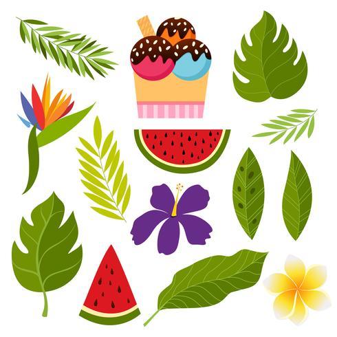 Coleção tropical com flores exóticas e folhas.