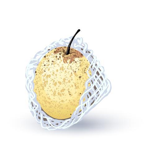 Vettore di pera su sfondo bianco.