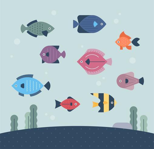 fish under the sea.