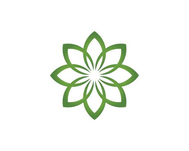 Logo de motifs floraux feuille et symboles sur fond blanc vecteur