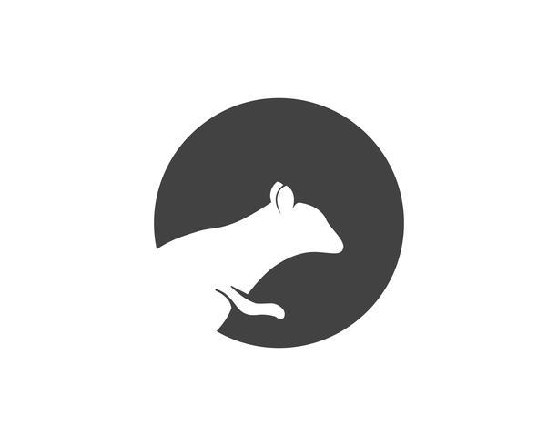 Eichhörnchen-Logo und Symbole