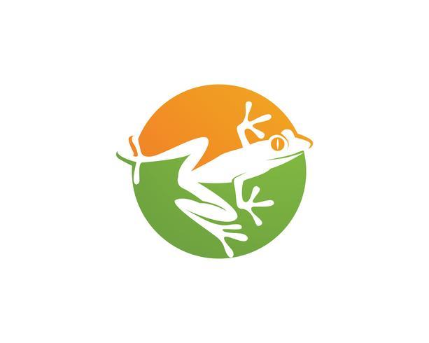 grüner Frosch Symbole Logo und Vorlage vektor