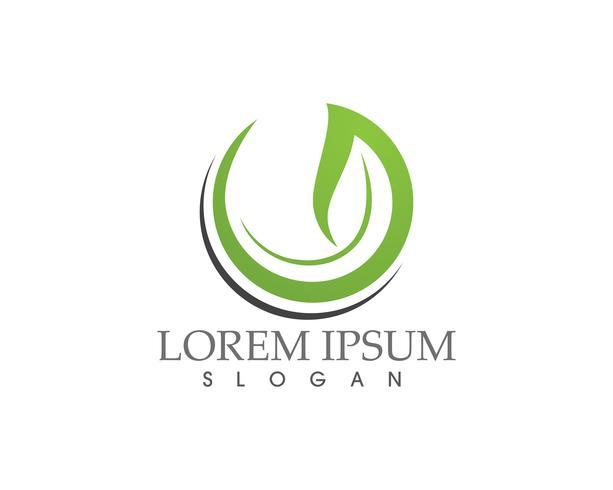 Logos de la hoja verde ecología naturaleza elemento vector icono