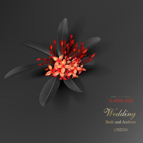 Folhas pretas tropicais e exótica flor vermelha
