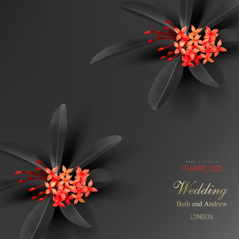 Tropische Schwarzblätter und exotische rote Blume