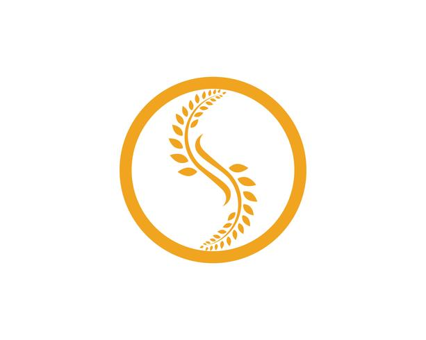 Modèle de logo de blé de l'agriculture, conception de la vie saine logo vector icon