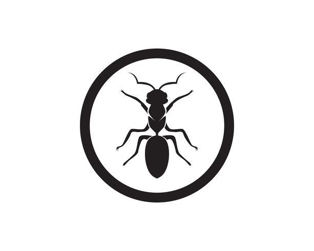 Ant Logo-Schablonenvektor-Illustrationsdesign vektor