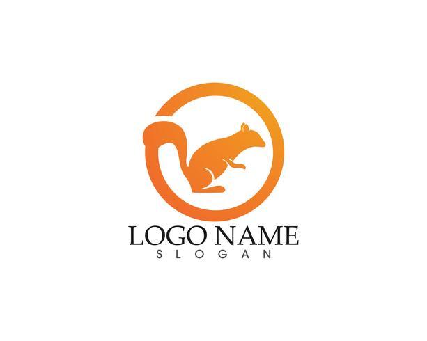 logo et symboles d'écureuil vecteur