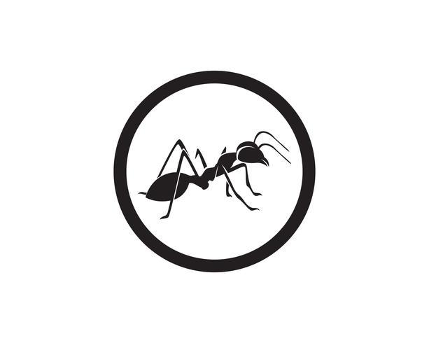 Ant Logo template vector illustratie ontwerp