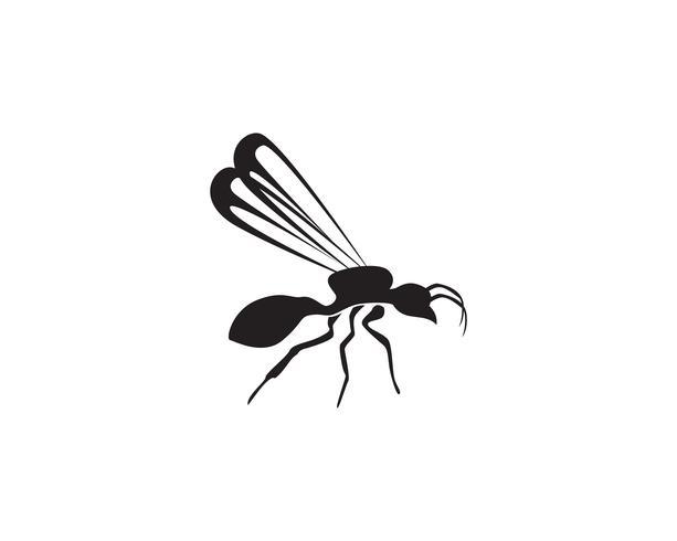 Projeto da ilustração do vetor do molde do logotipo da formiga