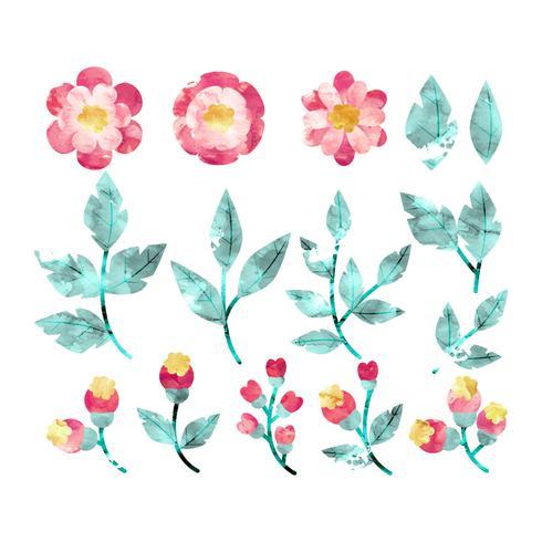 Vector acuarela flores y ramas