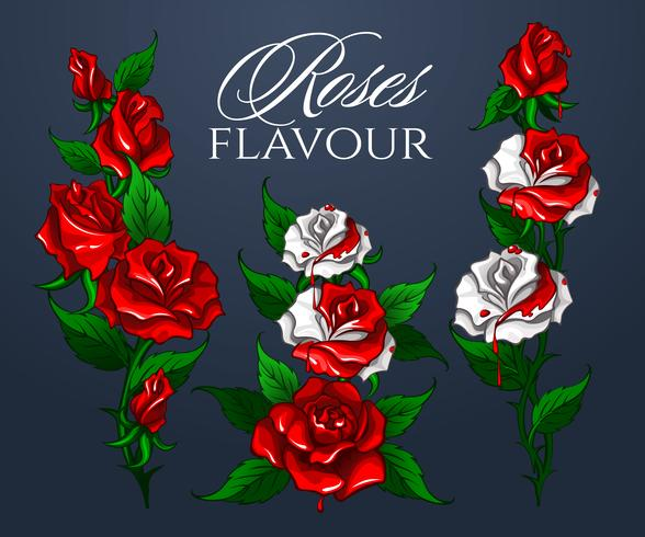 Ramo de sabor a rosas vector