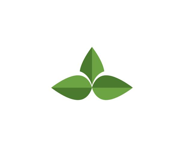 bladgrön naturlogo och symbolmall Vektor